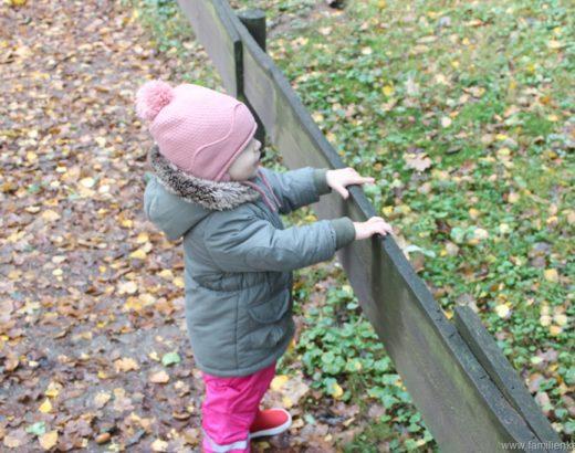 Kindergartenausflug – Wildpark Gangelt