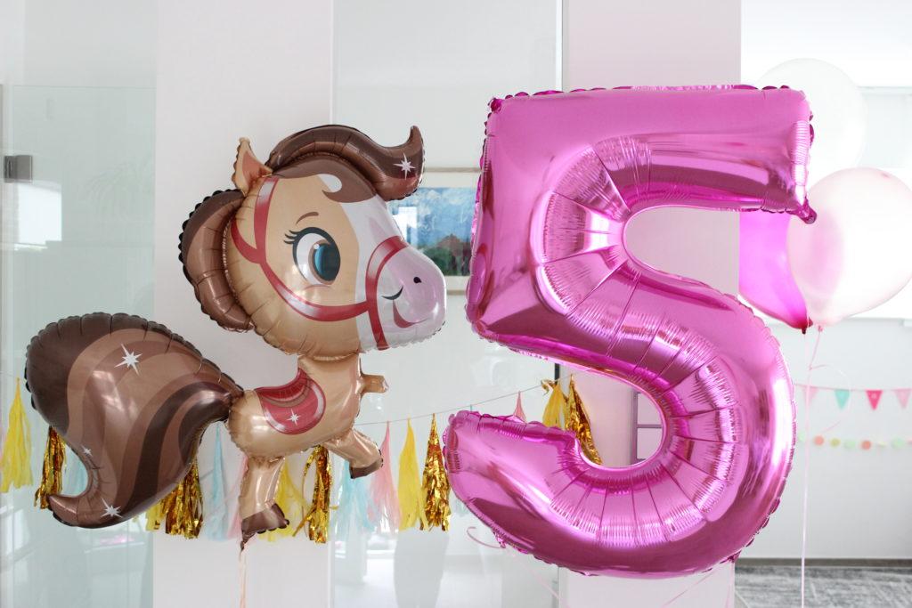 Fünfter Geburtstag Ponyhof