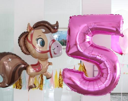 Geburtstag auf dem Ponyhof – Lias 5ter Geburtstag